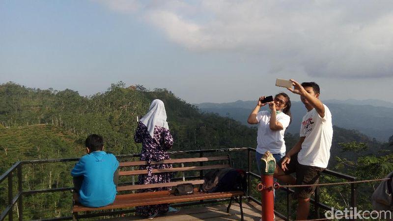 Kebun teh yang selalu ramai dikunjungi wisatawan ini berada di Dusun Nglinggo, Desa Pagerharjo, Kecamatan Samigaluh, Kabupaten Kulon Progo, DI Yogyakarta. (Eko Susanto/detikTravel)