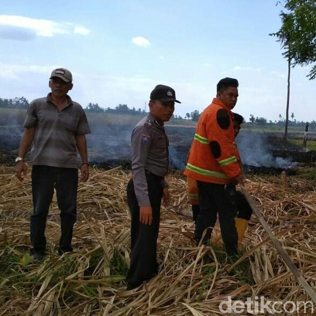 Lahan Tebu Dekat Pemukiman Terbakar, Warga Sempat Panik