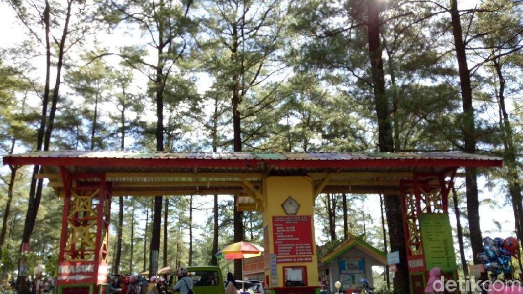 PPKM Level 3, Seluruh Wisata Alam di Malino Gowa Tutup hingga 2 Agustus