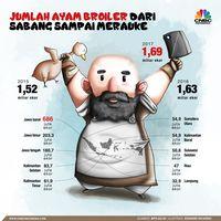 Populasi Ayam se-Indonesia 1,69 Miliar, Kok Harganya Mahal?