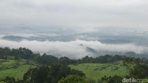 Indahnya Negeri di Atas Awan Tana Toraja