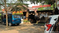 Balik Jakarta, Sekalian Wisata Kuliner Dulu di Batang