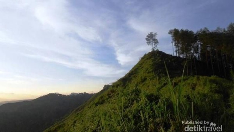 Bukit Besek di Desa Wisata Cikendung  (Asmawiati WieWie/dTraveler)