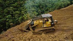 Setiap Tahun Dunia Kehilangan Hutan Hampir Seluas Pulau Jawa
