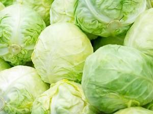 Kenyal Segar Jelly Rasa Kubis Bisa Jadi Pengganti Sayuran