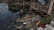 Pencemaran Lingkungan Hidup : Pengertian, Jenis, dan Penyebabnya
