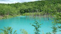 Foto: Inikah Kolam Biru Alami Paling Cantik di Jepang?