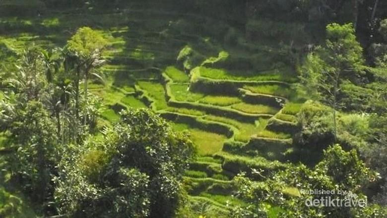 Ubud di Bali (AMBARA/dTraveler)