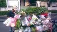 Masak Apa Hari Ini : Sayur Nangka Merah dan Orak-Arik Peda