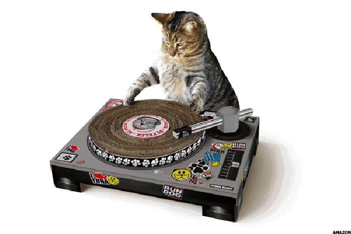 Turntables untuk Kucing. Benda ini berharga US$ 25,39 atau Rp 355.460 (kurs Rp 14.000/US$). Tentu bukan turtables sungguhan untuk memutar musik di piringan hitam. Ini hanyalah benda yang digunakan agar kucing anda tidak mencakar sembarangan. Foto: Thestreet