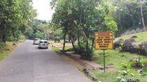 Taman Safari Prigen Akhirnya Tutup karena Corona
