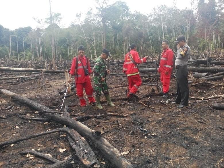 Ini Langkah Cepat KLHK Padamkan Api Cegah Kebakaran Hutan