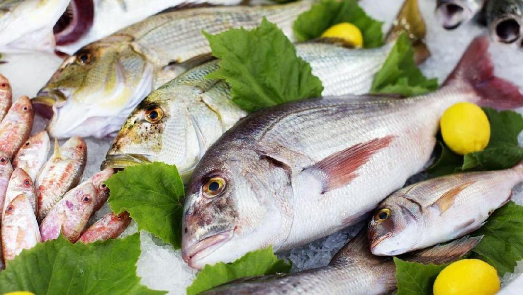 Penjual Ikan Ini Tempelkan Mata Mainan pada Ikan Agar Terlihat Segar