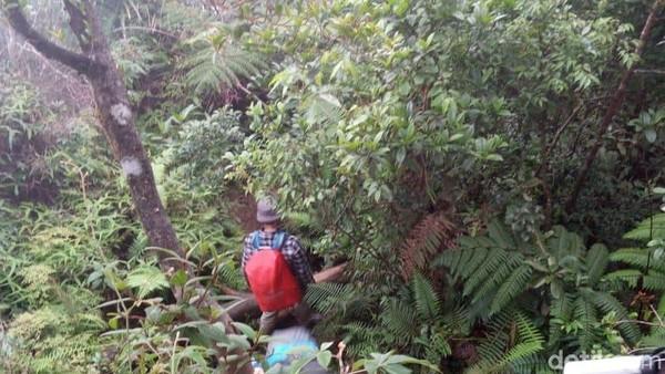Meski tidak terlalu tinggi, butuh 9 jam untuk mendaki Gunung Salak, bagi pendaki berpengalaman. Saat turun dari puncak ke basecamp biasa butuh waktu setengah dari perjalanan, maka di Gunung Salak ini makan waktu 2/3 waktu saat menanjak (Muhammad Idris/detikTravel)