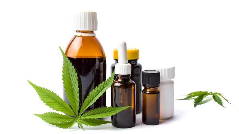 Marijuana plant and cannabis oil bottles isolated