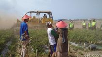 Tolak Bandara New Yogyakarta, Warga Hadang Buldozer