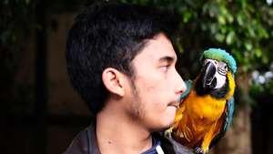 Alshad Kautsar, Sepupu Raffi Ahmad yang Rumahnya Rp 200 M