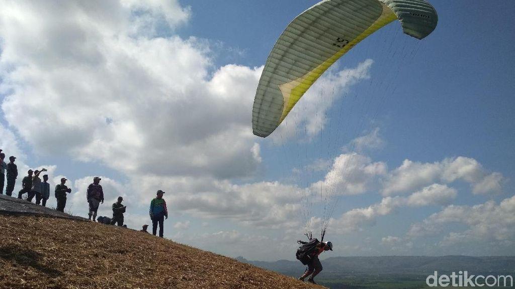 Keseruan Puluhan Atlet Paralayang Melayang di Langit Trenggalek
