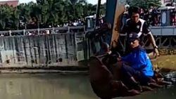 Aksi Penyelamatan Sri yang Tercebur ke Setu Babakan Saat Olahraga