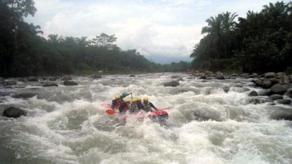 Menaklukkan Derasnya Jeram Sungai Bingei yang Menantang