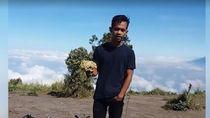 Kronologi Pendaki Dihukum karena Petik Edelweis di Gunung Merbabu