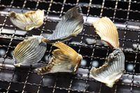 Berani Coba? Koktail Paling Mematikan di Dunia dari Sirip Ikan Fugu