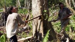 Dalam sebuah publikasi dalam jurnal The Lancet, peneliti menyebut para pemilik jantung paling sehat di dunia berasal dari satu suku di hutan Bolivia.