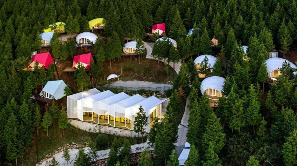 Korea Selatan Punya Resort Warna-warni di Tengah Hutan
