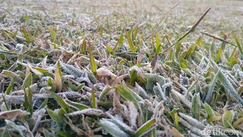 Hasil gambar untuk Kala 'Salju' Putihkan Dieng
