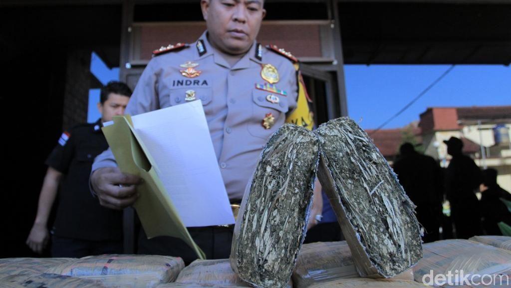 Ringkus Kurir Ganja di Bandung, Polisi Sita 49 Kg Ganja