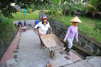 Di Bali, Padat Karya Cash Jokowi Dipakai untuk Bangun Subak