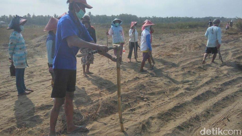 Warga Penolak Bandara Kulon Progo Pasang Patok Tanah