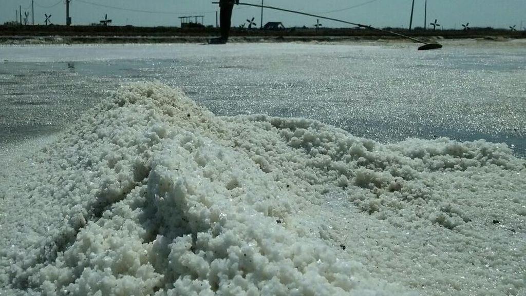 Produksi Garam di Cirebon Terkendala Cuaca