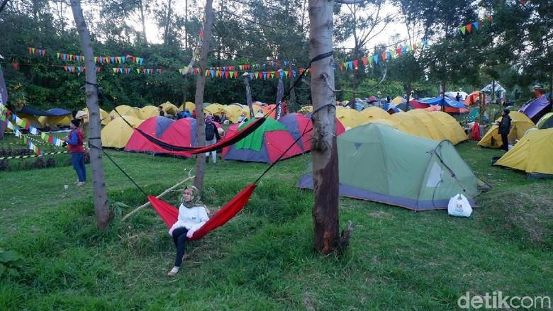 Ilustrasi Camping Ground Dieng Culture Festival tahun 2017 (Uje/detikTravel)