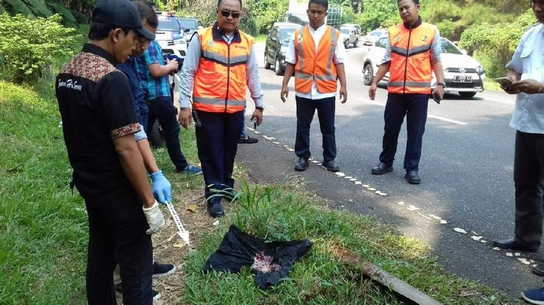 Mayat Bayi Ditemukan di Pinggir Jalan Exit Tol Bintaro