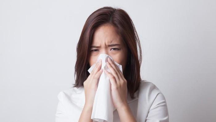 Pada tikus serangan flu yang parah bisa berefek samping tumbuhnya sel pengecap di paru-paru. (Foto ilustrasi: Shutterstock)