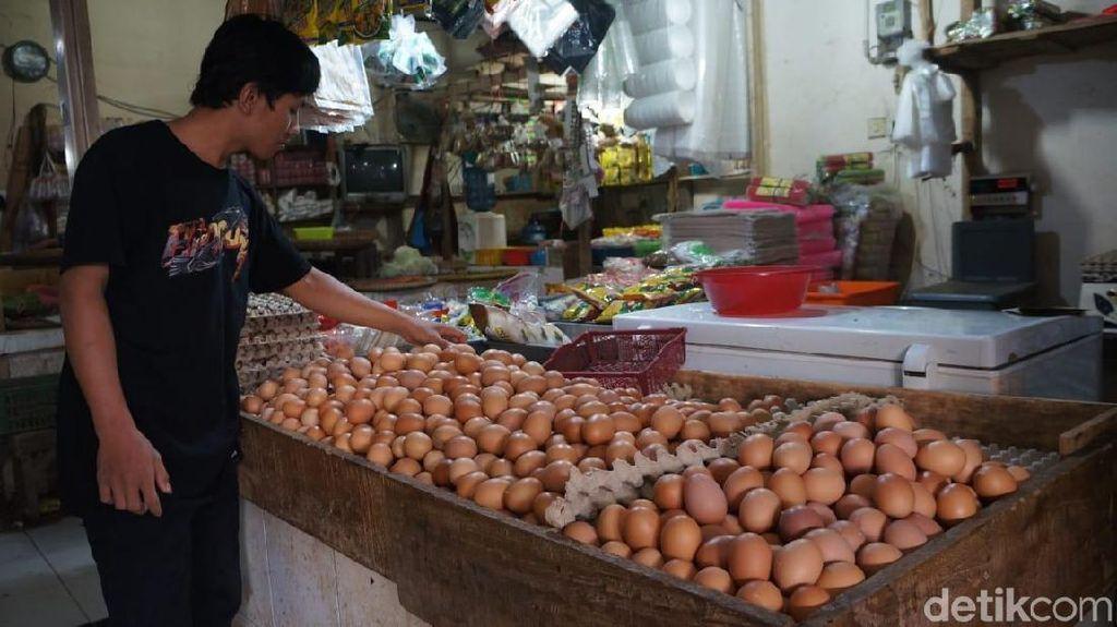 Harga Telur Ayam di Karawang Melonjak hingga Rp 30.000/Kg