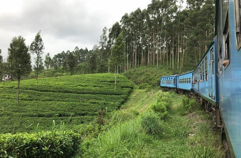 Inilah perjalanan naik kereta dari Colombo, ibu kota Sri Lanka menuju ke Ella di Distrik Badulla. Perjalanan sejauh 300 kilometer tidak terasa begitu melihat pemandangan hijau seperti ini. (Mihiri/lstimewa)