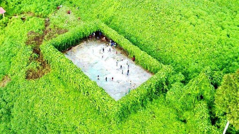 Lapangan bola tak biasa pertama ada di Nabawan, Sabah, Malaysia. Menariknya, lapangan yang satu ini dikelilingi oleh hutan rimba yang hijau (Harimau Malaya/Facebook)