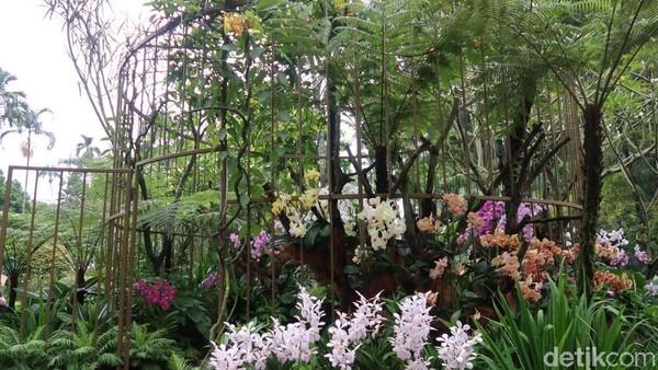 Sampai saat ini, Orchid Garden jadi taman cantik yang selalu jadi tujuan wisawatan. Selain cantik, taman ini juga mengedukasi dan instagenic! Cocok banget buat kamu yang punya passion untuk traveling ke Singapura (Bonauli/detikTravel)