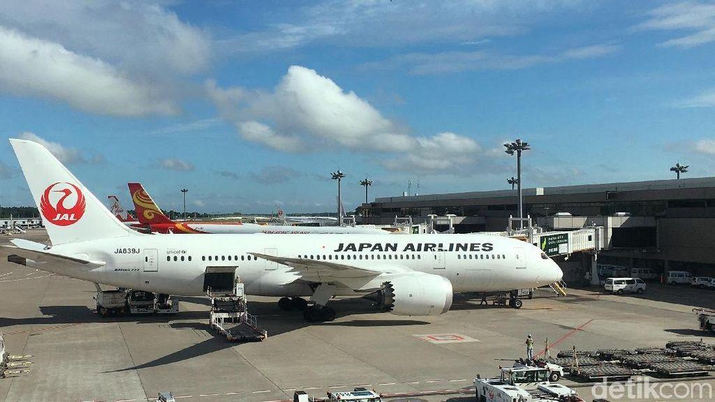 Terbang Nyaman ke Jepang, JAL Tawarkan Sensasi Baru