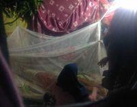 King Cobra Belum Dievakuasi, Dipakai untuk Ritual 'Hidupkan' Rizky