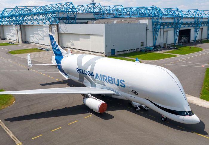 The Beluga adalah pesawat kargo yang dirancang untuk mengangkut sebagian besar pesawat Airbus ke pabrik perakitan di Toulouse, Prancis dan Hamburg, Jerman dari pemasok di seluruh Eropa. Istimewa/Airbus.