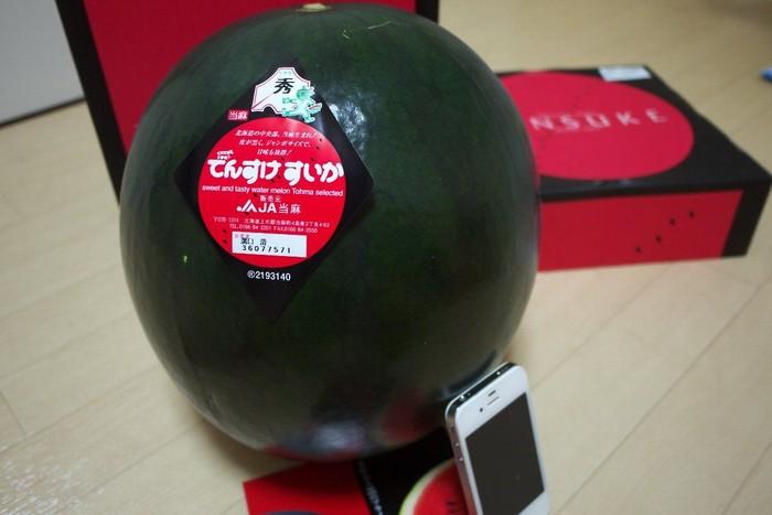 Semangka yang satu ini bernama Densuke. Buah ini berasal dari Jepang dan berharga fantastis. Satu buah Densuke terjual sebesar $121 (Rp 1.7). Ini karena hanya ada 100 buah Densuke dalam setahun. Foto: Istimewa