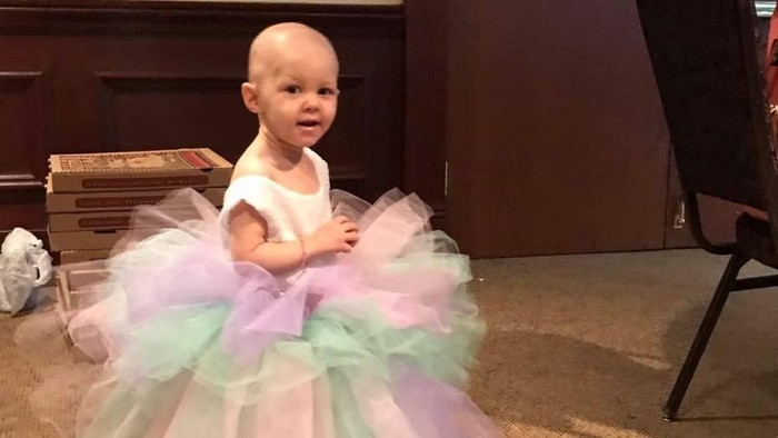 Harlow mengidap kanker ovarium di usia 15 bulan. Foto: Facebook/Harlow the Brave
