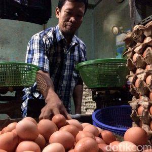 Pesan Mendag ke Pedagang Telur, Jangan Ambil Untung Kebanyakan