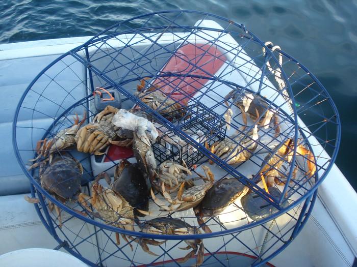 Angel Perez tak menyangka hobinya memancing kepiting justru membawa petaka. Foto: ilustrasi/thinkstock