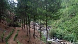 Ide Libur Akhir Pekan: Mandi Air Hangat di Tengah Hutan Banjarnegara