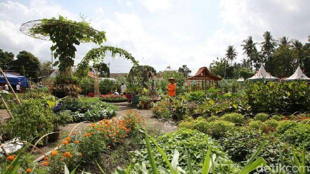 Lokasi Agro Expo dan pameran pertanian/
