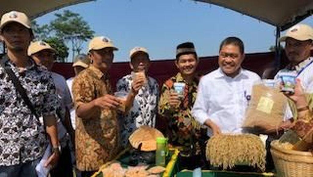 Kemendes: Dana Desa Dukung Penangkaran Benih Unggul Pertanian